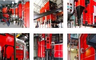 Máxima combustión de la biomasa, mínima emisión