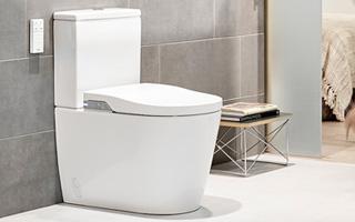 In-Wash® Roca, el inodoro que revoluciona la higiene en el cuarto de ...