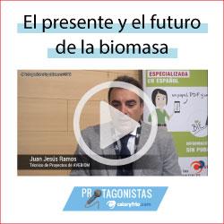 Caloryfrio noticia destacada biomasa 2020 protagonistas futuro biomasa