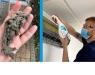 Limpieza R-HVAC: Consejos de Climalife para alcanzar objetivos de eficiencia energética y ahorrar en la factura de la luz
