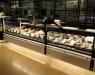 Supermercados Sanchez Romero apuestan por muebles de refrigeración y congelación de Frost-Trol