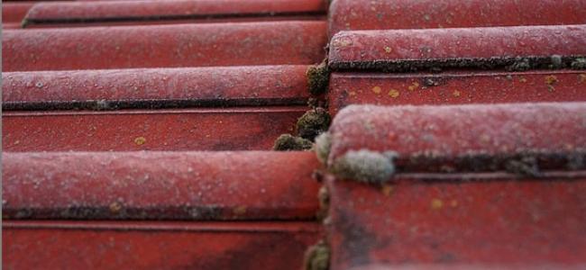 Diferentes tipos de humedades y cómo afectan a los edificios