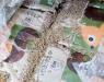 Precio del pellet en España: variaciones y evolución