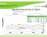 Potencial del sector de la bioenergía en España y Canadá