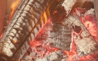 Andalucía, primera comunidad autónoma en consumo de biomasa para usos térmicos
