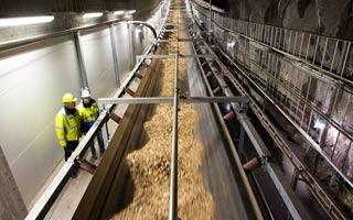 Estocolomo alberga una de las mayores redes de climatización con biomasa de Europa