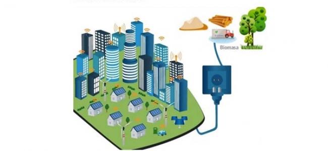Biomasa y empresas de servicios energéticos