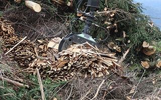 La instalación de estufas y calderas de biomasa crece un 16,2 por ciento en 2018