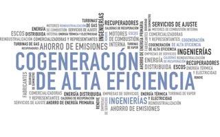 El futuro de la cogeneración y la política energética serán los temas a debatir en el XII Congreso Cogen España