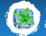 TECNOFRÍO'19: vuelve el Congreso sobre Tecnologías de Refrigeración