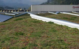 Knauf Insulation instala una cubierta verde extensiva de 6.800m2 en Guipúzcoa
