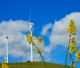 La refinanciación de las renovables: una cuestión de rentabilidad